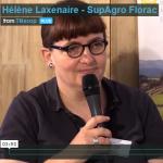 Tourtt_heleneLaxenaire